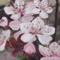 1_Apple-Blossoms_Olena-Lopatina